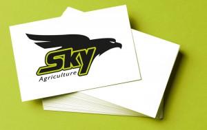 Sky carte de visite