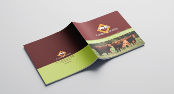 Brochure - Castel VIandes